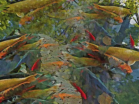 Koi Pond with Reflections 9 by Lynda Lehmann