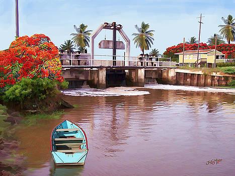 Koker In Berbice Guyana by James  Mingo