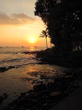 Kona Coast by Ron and Linda Balogh