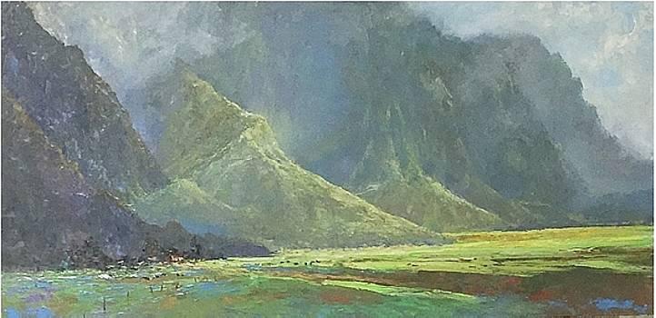 Ko'olau, Kahalu'u, Oahu  by Ed Furuike