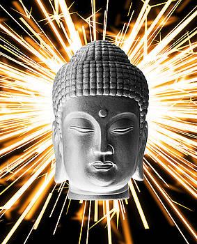 Korean Enlightenment by Terrell Kaucher