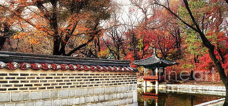 Korean Secret Garden in Fall by Matt Tilghman