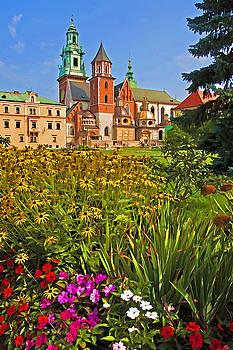 Dennis Cox - Krakow Castle