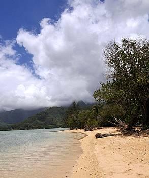 Kualoa Beach in Oahu by Lorrie Morrison