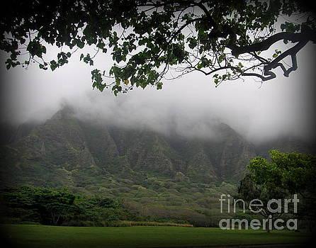 Kualoa Park on Oahu by Joy Patzner