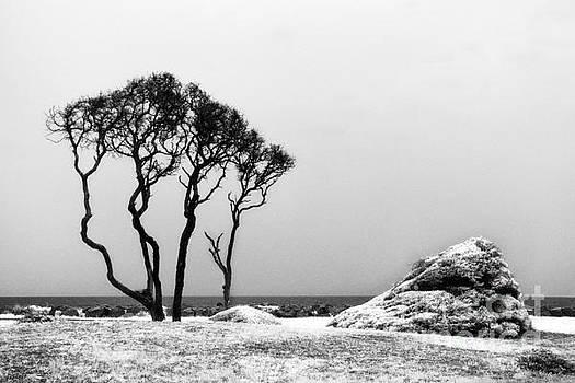 Kure Beach by Jeff Holbrook