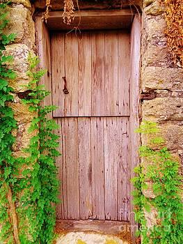 Kyle Pre-Civil War Door by Chuck Taylor