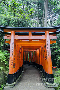 Kyoto Tori Gates by Ben Johnson