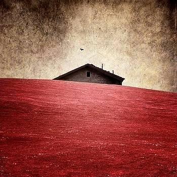 La Casa by Luis  Beltran