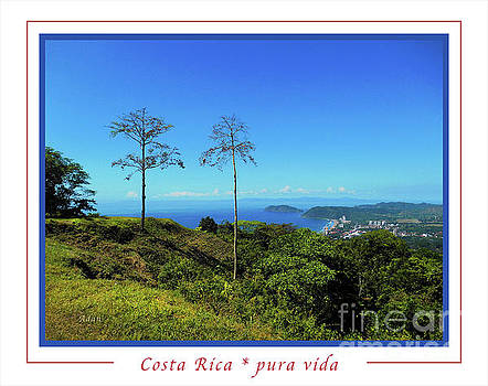 Felipe Adan Lerma - la Casita Playa Hermosa Puntarenas Costa Rica - Lost on Parrot Hill Greeting Card Poster