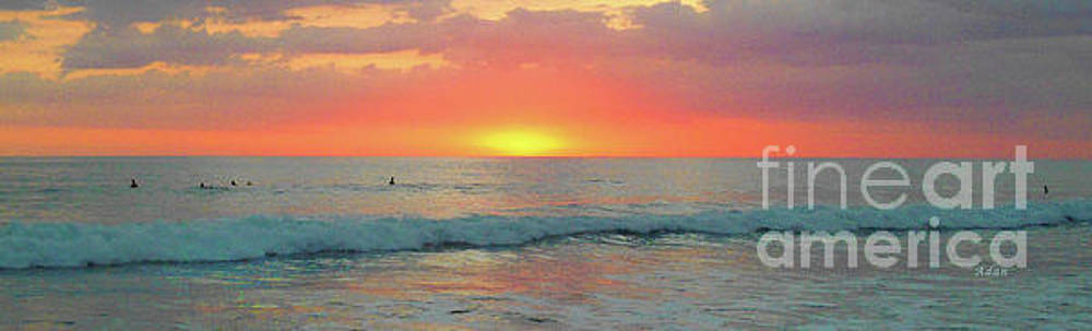 Felipe Adan Lerma - la Casita Playa Hermosa Puntarenas Costa Rica - Sunset Teal Panorama