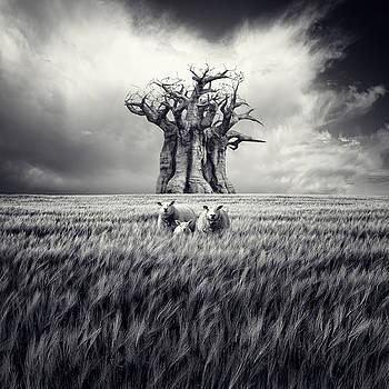 La familia by Luis  Beltran