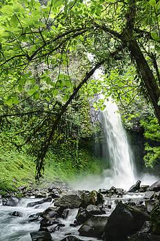 Oscar Gutierrez - La Fortuna Waterfall