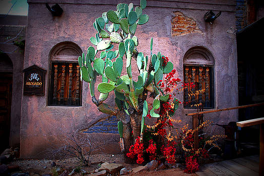 Susanne Van Hulst - La Hacienda in Old Tuscon AZ