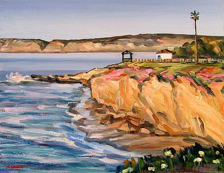 La Jolla Cliffs by Robert Gerdes