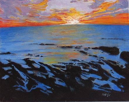 La Jolla - South Bird Rock by Paintings by Parish