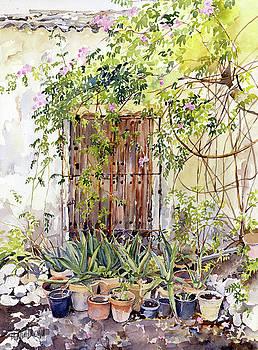 La Puerta Vieja Y Macetas by Margaret Merry
