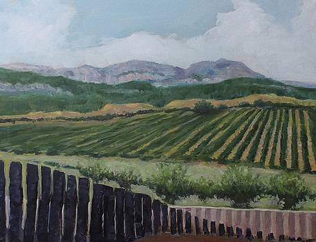 La Rioja Valley by Dennis Sullivan