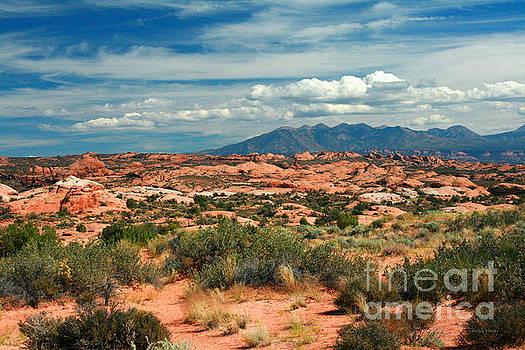 Corey Ford - La Sal Mountains, Moab Utah, USA