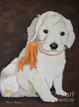 Labradoodle Pet Portrait by Norm Starks