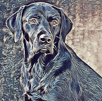 Labrador Retriever - Black Lab Dog by Mike Rabe