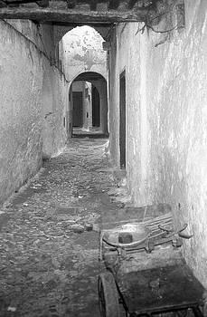 Labyrinth by Susan Tribuzio
