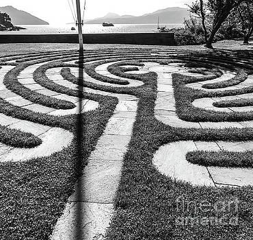 Labyrinth  by William Wyckoff
