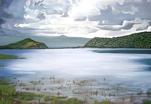 Lacul Calinesti-Oas by Costin Cristian Augustin