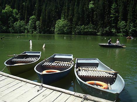 Lacul Rosu by Bogdan Petrila