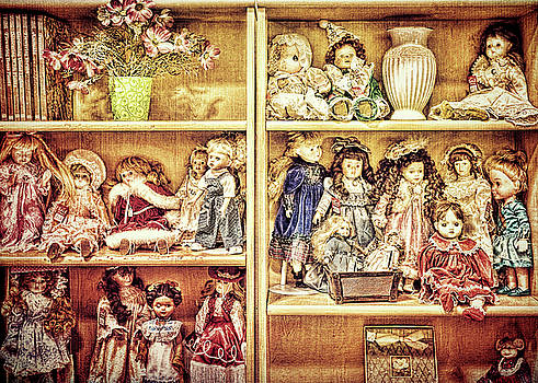 Ladies of the Bookcase by Lewis Mann