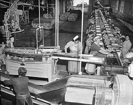 California Views Mr Pat Hathaway Archives - Ladies on Packing line on Cannery Row, Monterey circa 1948