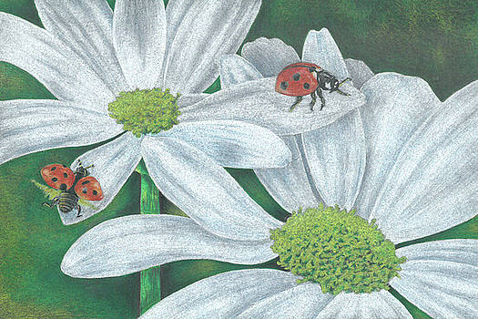 Lady Bugs by Troy Levesque