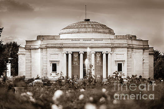 Lady Lever Art Gallery by Paul Warburton