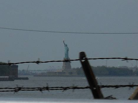 Lady Liberty in a Mad Sad World by Robin Gill