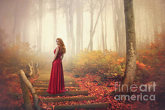 Lady Of The Golden Forest by Evelina Kremsdorf
