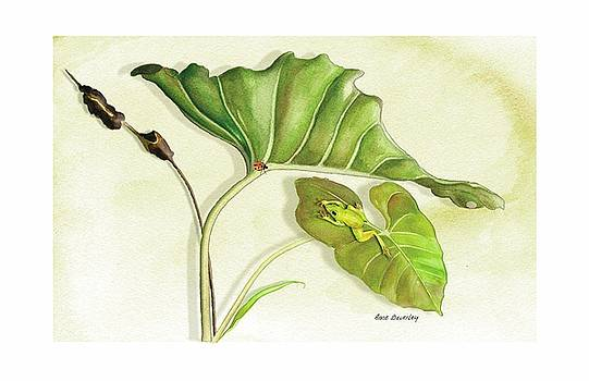 Lady on a Leaf by Anne Beverley-Stamps