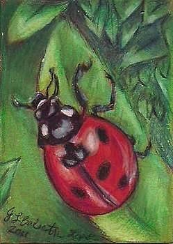 Jamey Balester - Ladybug ATC