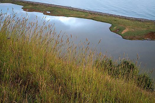 Mary Lee Dereske - Lagoon at Ebeys Landing