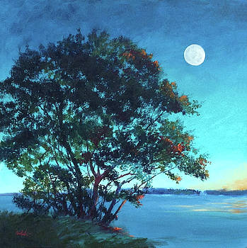 Lagoon Moon by Sheila Psaledas