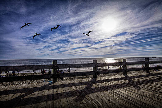 Randall Nyhof - Laguna Beach Boardwalk with Flying Pelicans late afternoon