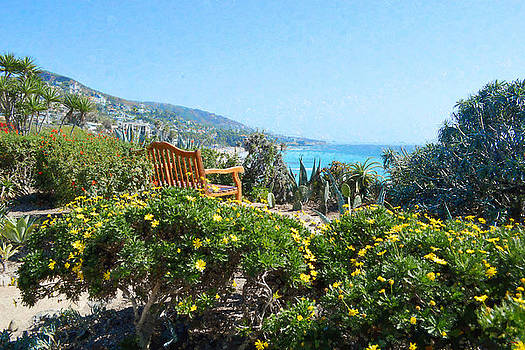 Glenn McCarthy Art and Photography - Laguna Beach Overlook