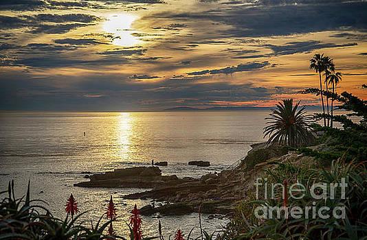 Laguna Beach Paradise by Mariola Bitner