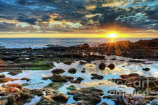 Laguna Beach Tidepools by Eddie Yerkish