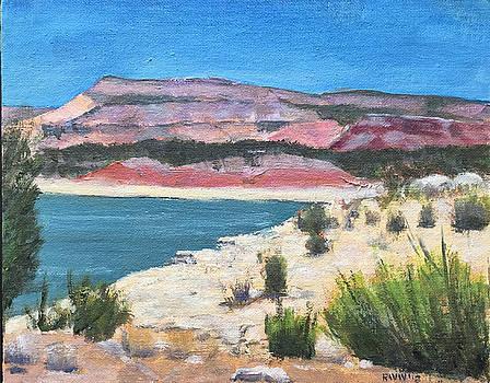 Lake Abiquiu  by Richard Willson