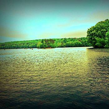 Lake by Amanda Richter