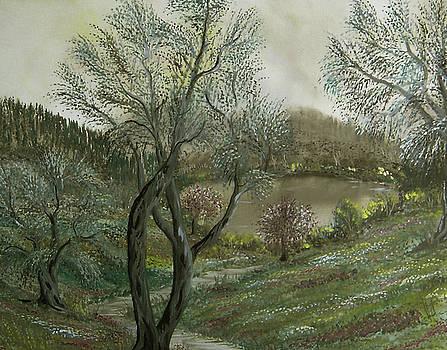 Lake by Anna Witkowska
