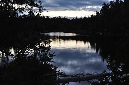 Lake at Dawn by Erin Clausen
