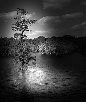 Lake at night by Cecil Fuselier