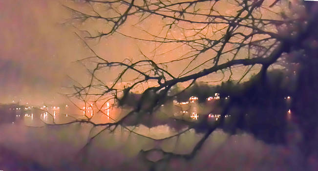 Foggy Lake at Night Through Branches by Lynn Hansen