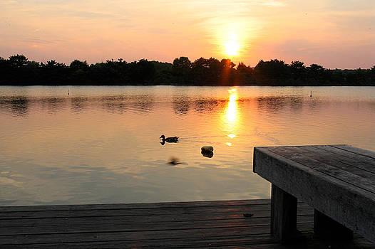Lake at Sunset by Joshua Ackerman